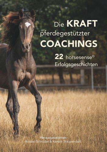 Die Kraft pferdegestützter Coachings 7